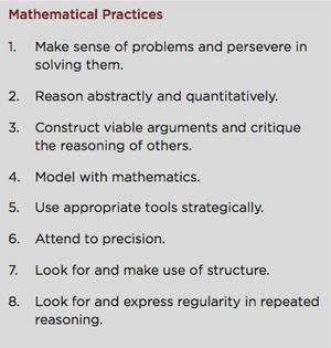 8 Standards of Practice